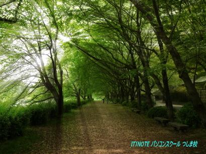 後楽園散歩道2