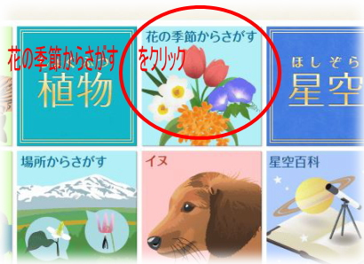 Yahooきっず図鑑4