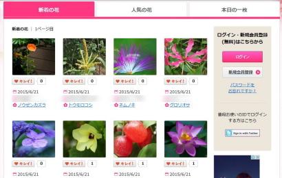 みんなの花図鑑3
